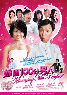 嫁個一百分男人 MARRYING MR. PERFECT (DVD)